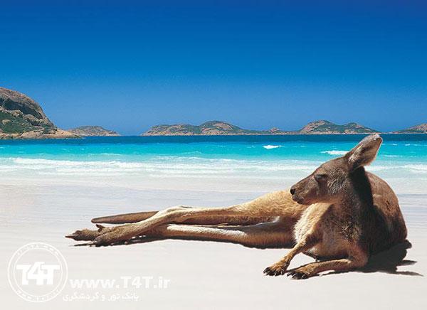 تور استرالیا از مشهد