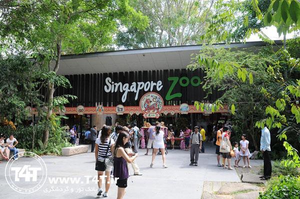 تور چارتر سنگاپور از مشهد